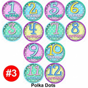 Monthly Baby Stickers - POLKA DOTS Baby Month Onesie Stickers for bodysuit
