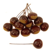 FloristryWarehouse Artificial Autumn Conkers Chestnuts Craft Picks