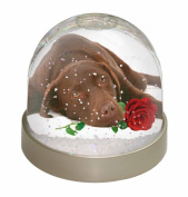 Chocolate Labrador with Red Rose Snow Dome Globe Waterball Gift