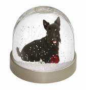 Scottish Terrier with Red Rose Snow Dome Globe Waterball Gift
