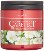 NAPLA CARETECT HB Repair Treatment 250g 260ml