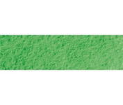 Caran Dache : Museum Aquarelle Pencil : Emerald Green