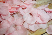 Pink Silk Rose Petals Confetti for Weddings in Bulk by PaperLanternStore