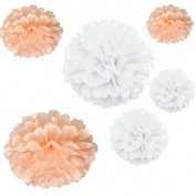 Joinwin® 12PCS Mixed Sizes White Peach Tissue Paper Flower Pom Poms Pompoms Wedding Birthday Party Nursery Decoration