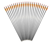 24 Pack Outdoors Carbon Fibre Shaft Compound Bow and Recurve Bow 80cm Arrows with Field Points
