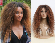 Deluxe Ciara Long Curly Brown Highlighted Afro Heat Resistant Celebrity Fashion Wig