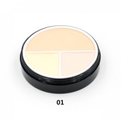 Pure Vie(TM) Professional Cream Concealer Camouflage Makeup Palette Powder Blusher #1