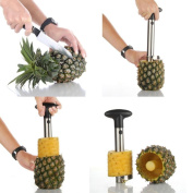Continu Brand New Excellent Quality Easy Pineapple Corer Slicer Cutter Peeler Gadget Offered Kitchen Novelty Tool Stainless Steel