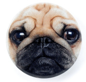 Pug Face Mirror by Catseye