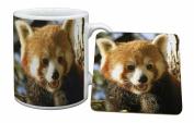 Red Panda Bear Mug and Table Coaster, Ref:ARP-1MC