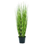 Europalms 90 cm Zebra Grass, Green