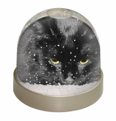 Gorgeous Black Cat Snow Dome Globe Waterball Gift