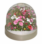Poppies and Wild Flowers Snow Dome Globe Waterball Gift