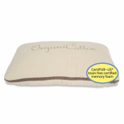 ORGANIC Toddler Pillow - CertiPUR-US TOXIN FREE w/ Mesh to Keep Kids COOL, BEST Neck Support - USA and Oeko-Tex Certified Cotton Cover, Hypoallergenic 13x18 (Angel Baby pillowcase sold separately). LIFETIME GUARANTEE!