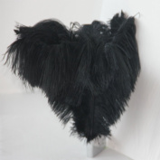 10pcs New Style Real Natural 12-14 Inch(30~35cm) Ostrich Feathers