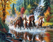TSING DIY Crystals Paint Kit 5D Diamond Painting By Number Kits,Horese Galloping in River-41cm W*50cm L