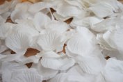 White Silk Rose Petals Confetti for Weddings in Bulk by PaperLanternStore