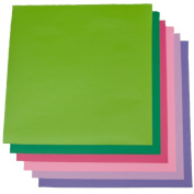 Spring Pack Outdoor 30cm x 30cm - Glossy Outdoor Permanent Adhesive Vinyl Oracal 651