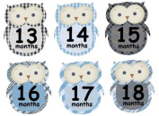 13-24 months Monthly Baby Boy Stickers Plaid Owls UNCUT Argyle Damask Stripes Boy Owls Second Year