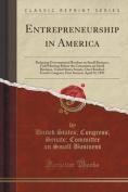 Entrepreneurship in America