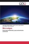 Microalgas [Spanish]