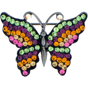 Multicolor Butterfly Pin