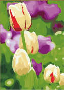 Greek Art Paintwork Paint Colour By Numbers Kit,Tulip styleB,41cm -by-50cm