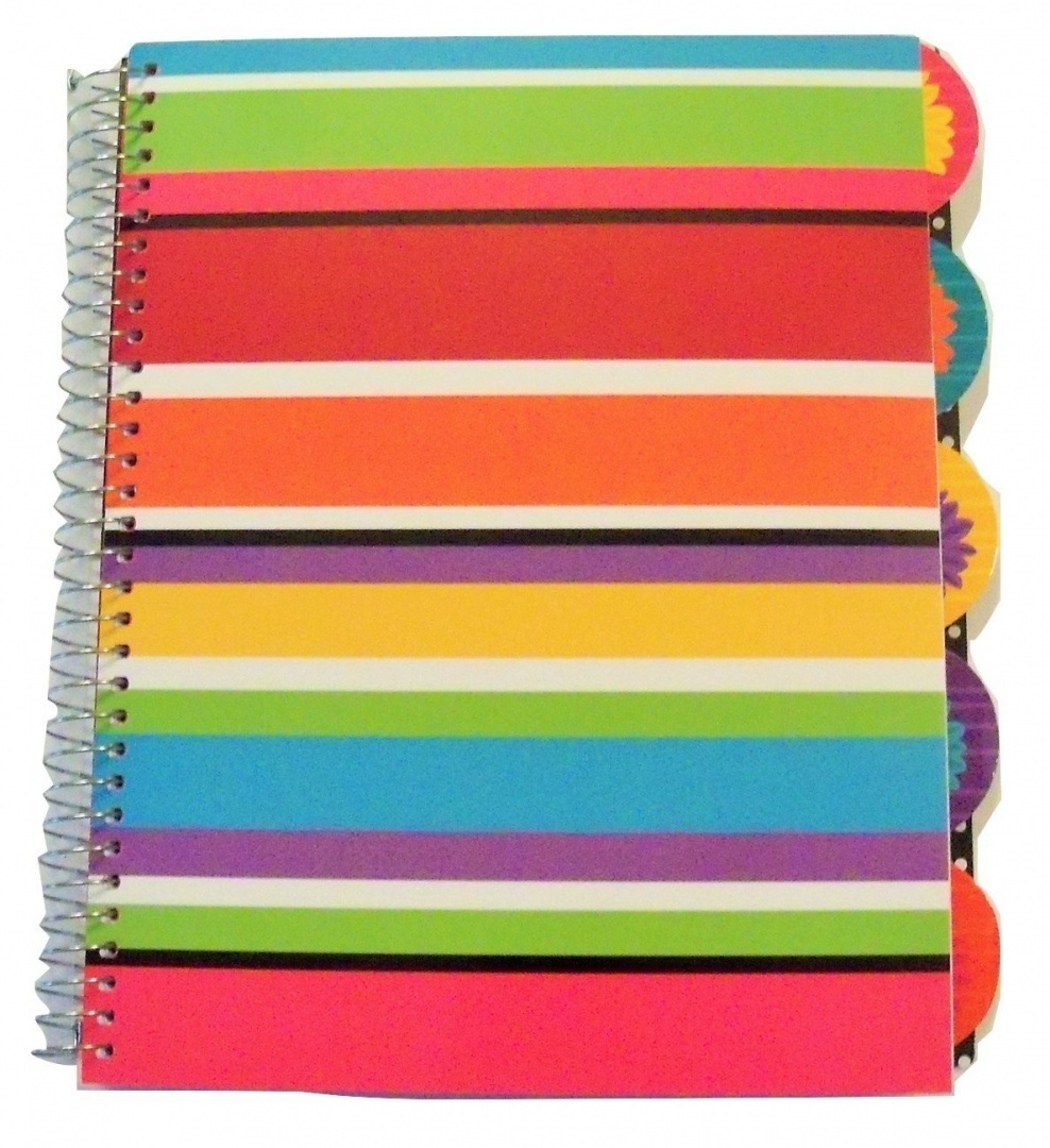 Carolina Pad Studio C College Ruled Poly Cover 5-Subject Spiral Notebook ~  Sugarland (Playful Stripes