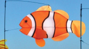 Clown Fish Spinner