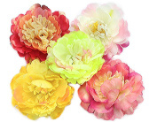BONAMART ® 5 pcs Woman Lady Girl Brooch Corsage Hair Clips Accessories Peony Flower For Wedding Party