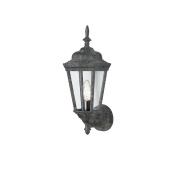 Transglobe Lighting 4095 SWI Outdoor Wall Light with Clear Glass Shade, Swedish Iron Finished