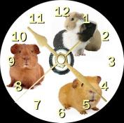 Guinea Pig Novelty Cd Clock + Free Desktop Stand