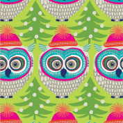 Winter Owl Wrapping Paper Roll 60cm X 4.6m