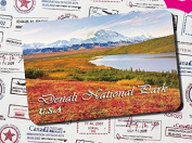 The special tourism souvenir Fridge magnets soft magnetic Denali national park
