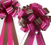Hot Pink and Brown Wedding Pew Pull Bows - 20cm Wide, Set of 6
