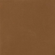 LaCarte Sienna Pastel Paper Pack of Five - 50cm . X 60cm .