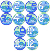 BABY WHALES Baby Month Onesie Stickers Baby Shower Gift Photo Shower Stickers, baby shower gift by OnesieStickers