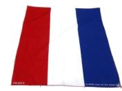 50x50 cm French Handkerchief Cotton pocket square Hanky Bandana Scarf Hankie Headband World Cup Flag French