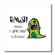 EvaDane - Funny Quotes - Rawr means I love you in dinosaur - Iron on Heat Transfers - 10x10 Iron on Heat Transfer for White Material