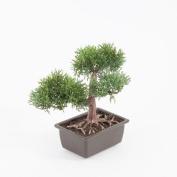 "Artificial Bonsai Cedar in pot, 9"" / 22 cm - Plastic Bonsai - Hotel Decoration - artplants"