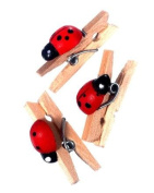 Red Ladybird Craft Pegs