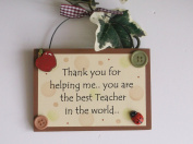 Best teacher in the world thank you wooden gift plaque
