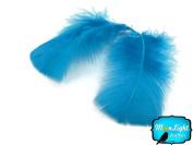 Turkey Feathers Turkey T-base Feathers 15ml Turquoise Blue