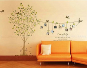 Tree Birds Photos Vines Wall Decal Home Sticker Paper Removable Living Dinning Room Bedroom Kitchen Art Picture Murals DIY Stick Girls Boys Kids Nursery Baby Playroom Decoration Pp-lm8001