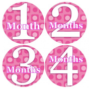 PINK POLKA DOTS Baby Month By Month Stickers - Baby Month Onesie Stickers Baby Shower Gift Photo Shower Stickers, baby boy