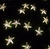 Warm White 3M 30 LED Fairy String Lights Battery Operated Sea Star Shaped Indoor & outdoor Used for Christmas, Party, Wedding, New Year Decorations, Etc