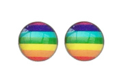 Gay Pride Rainbow Flag. 8mm Stainless Steel Earrings
