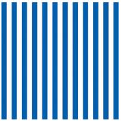 Amscan Classic Stripe Jumbo Gift Wrap, Blue, 4.9m x 80cm