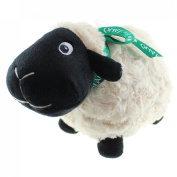Black Sheep Soft Toy with Green Ireland Ribbon