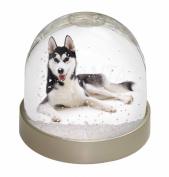 Siberian Husky Dog Snow Dome Globe Waterball Gift